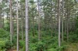 Lot 4 High Pines Drive - Photo 38