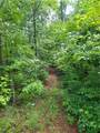 413 Whit's Way Lane - Photo 12