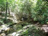 205 Busch Cabin Trail - Photo 26