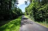 205 Busch Cabin Trail - Photo 4