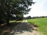 303B Arrowhead Trail - Photo 30