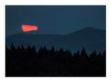 125 Red Bear Ridge - Photo 25