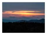 125 Red Bear Ridge - Photo 26