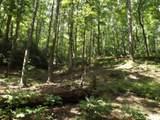 300 Castle Creek Drive - Photo 48