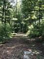 1038 Trailwinds Drive - Photo 3