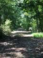 1038 Trailwinds Drive - Photo 7