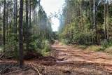 000 Flat Rock Road - Photo 5
