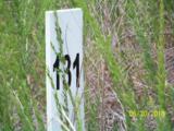930 Eagles Harbor Drive - Photo 1