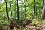 551 Leaning Pine #Cks-Ph3-81 Trail - Photo 19