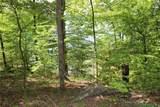 551 Leaning Pine #Cks-Ph3-81 Trail - Photo 20