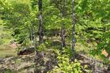 551 Leaning Pine #Cks-Ph3-81 Trail - Photo 35