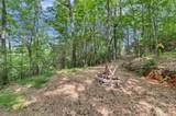 590 Old Chapman Trail - Photo 41