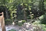 300 Castle Creek Drive - Photo 45