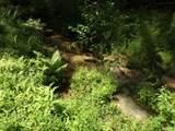 300 Castle Creek Drive - Photo 40
