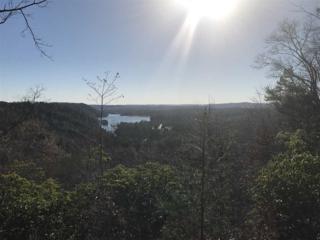 205 Appalachian Trail, Sunset, SC 29685 (MLS #20187154) :: Les Walden Real Estate