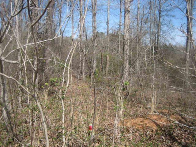 Lot 3 Brookside Drive, Honea Path, SC 29654 (MLS #20152560) :: Tri-County Properties