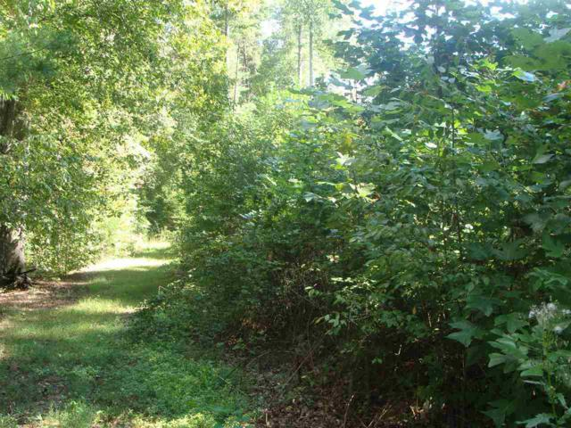 215 Emory Lane & Time Out, Tamassee, SC 29686 (MLS #20180822) :: Tri-County Properties