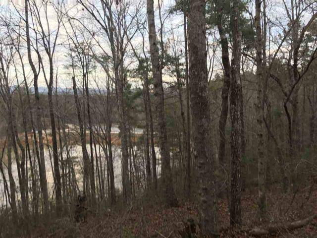 Lot 1 Whitewater Lake Drive, Tamassee, SC 29686 (MLS #20183505) :: Tri-County Properties
