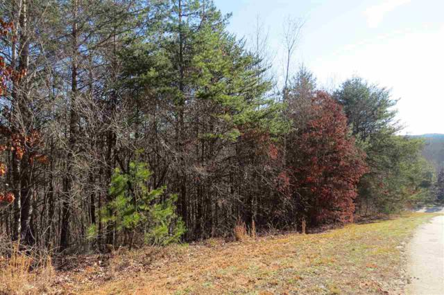lot 7 Rock Creek Trail, Toccoa, GA 30577 (#20188048) :: Connie Rice and Partners