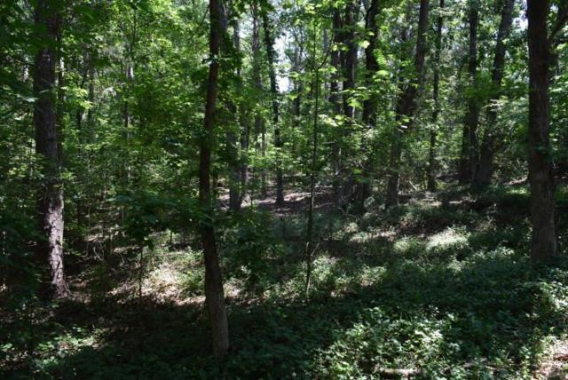 Lot 29 Royal Oaks Drive, Anderson, SC 29625 (MLS #20190288) :: Tri-County Properties