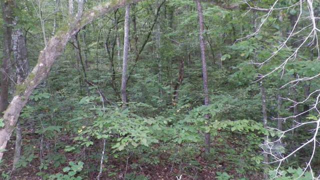 Lot 105 Timber Ridge Trail, Westminster, SC 29693 (MLS #20191059) :: Tri-County Properties