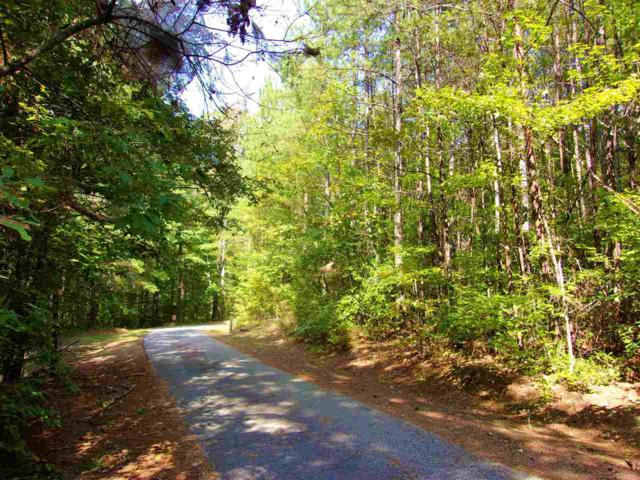 00 The Bear Boulevard, Tamassee, SC 29686 (MLS #20192054) :: Les Walden Real Estate