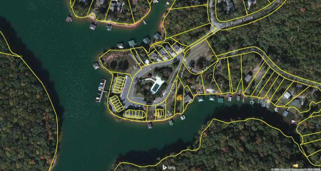 1100 Loran Point Circle, Seneca, SC 29672 (MLS #20192326) :: Tri-County Properties