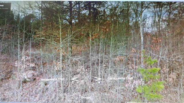 583 Issaqueena Tr., Clemson, SC 29631 (MLS #20192519) :: Tri-County Properties