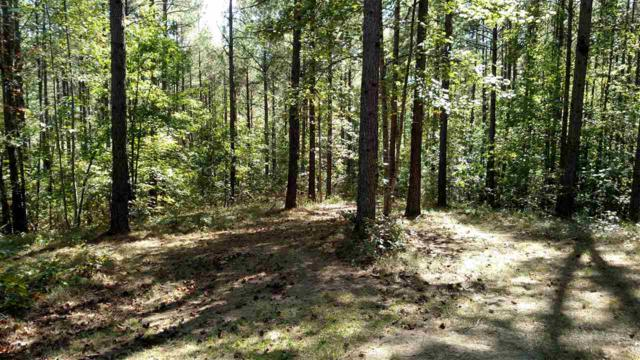 114 Sunblest Trail, Six Mile, SC 29682 (MLS #20192548) :: Tri-County Properties