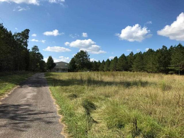 370 Woodyard Road, Trenton, SC 29847 (MLS #20192764) :: Tri-County Properties