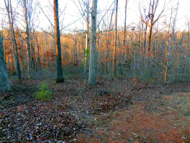 Lot 038 Overlook Drive, Fair Play, SC 29643 (MLS #20194967) :: The Powell Group of Keller Williams