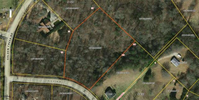 115 Creek View Drive, Liberty, SC 29757 (MLS #20195050) :: Tri-County Properties