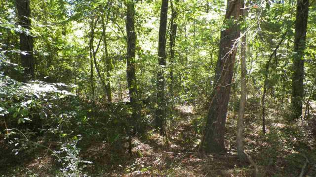 Lot 4 & 5 Overview Terrace, Anderson, SC 29621 (MLS #20195488) :: The Powell Group of Keller Williams