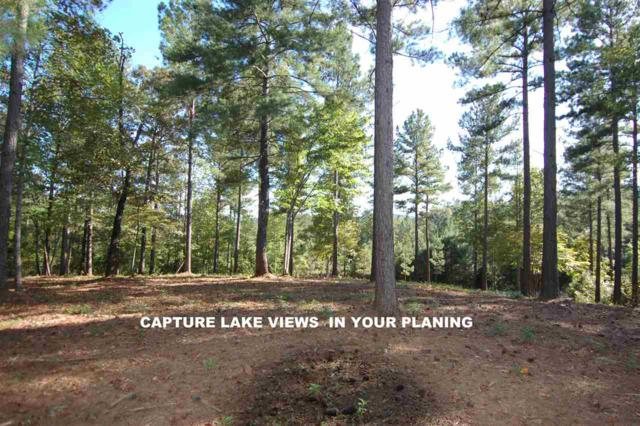 Lot 12 Button Wood Ct, Salem, SC 29676 (#20195875) :: Connie Rice and Partners
