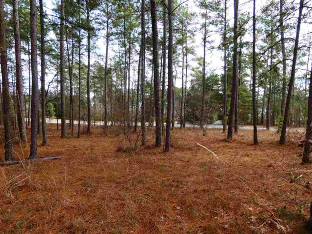 Lot 96 Wynward Pointe III, Salem, SC 29676 (MLS #20196090) :: Tri-County Properties