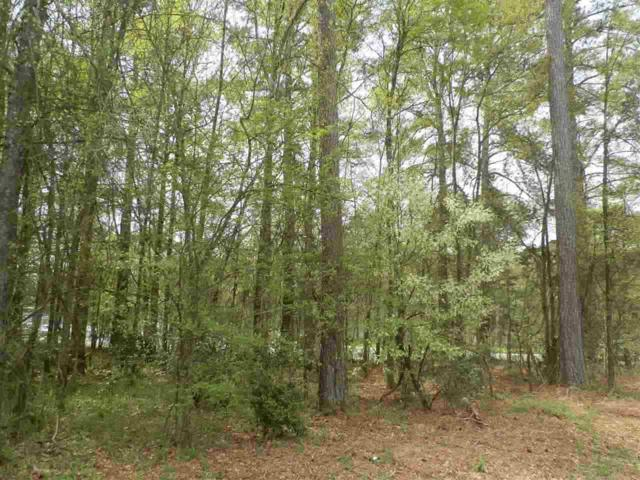 Lot 1 Brown Road, Anderson, SC 29621 (MLS #20196647) :: Tri-County Properties