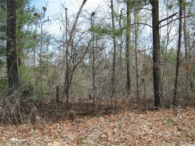 LOT 1 Osheal Drive, Tamassee, SC 29686 (MLS #20201427) :: The Powell Group of Keller Williams