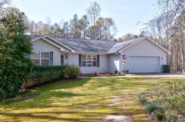 113 Lakefront Road, Townville, SC 29689 (MLS #20201461) :: Les Walden Real Estate