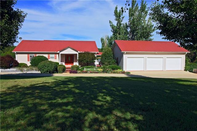 201 The Bear Boulevard, Tamassee, SC 29686 (MLS #20201478) :: Les Walden Real Estate