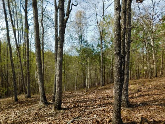 Lot 88 Green Cove Way, Six Mile, SC 29682 (MLS #20201569) :: The Powell Group of Keller Williams