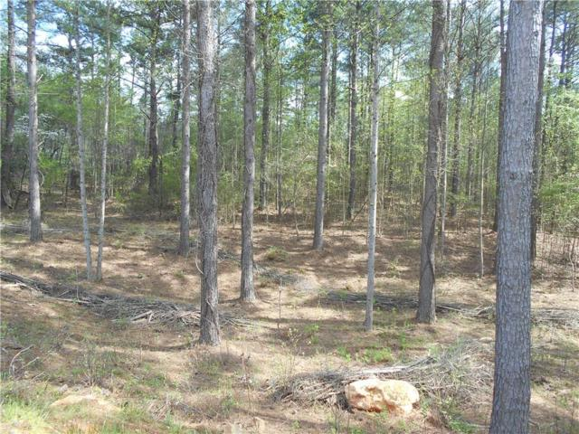 1 Stamp Creek Landing Road, Seneca, SC 29672 (MLS #20201722) :: Tri-County Properties