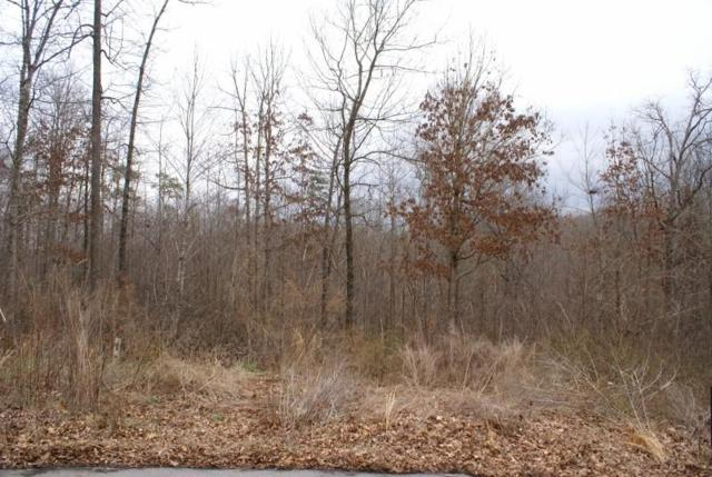 Lot 18 Serria Way, Seneca, SC 29678 (MLS #20201940) :: The Powell Group of Keller Williams