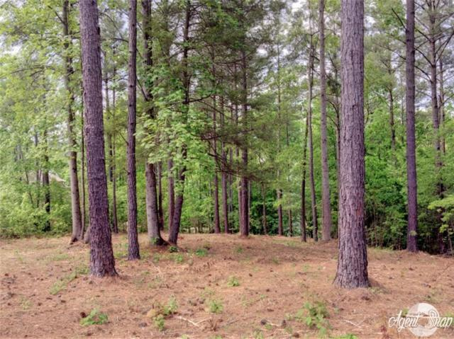 416 Pileated Woodpecker, Sunset, SC 29685 (MLS #20202652) :: Tri-County Properties