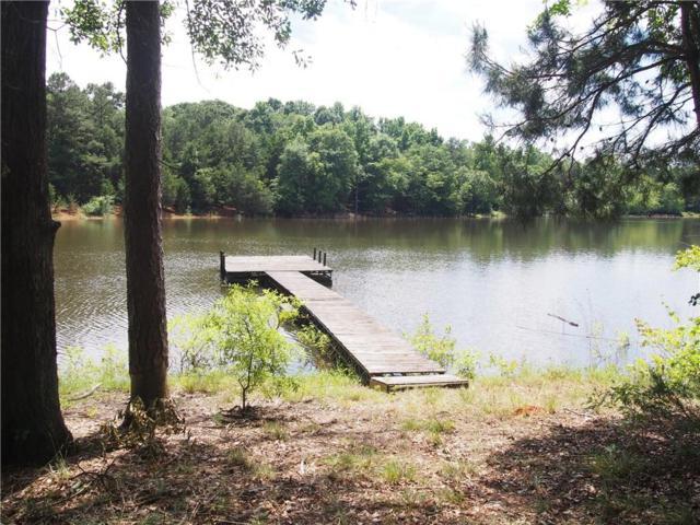 124 Beaver Lane, Townville, SC 29689 (MLS #20203352) :: Les Walden Real Estate