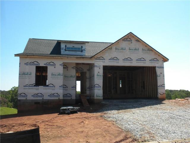 103 Homeplace Drive, Pendleton, SC 29670 (MLS #20203573) :: Tri-County Properties