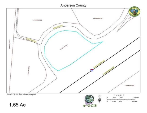 Lot 95 Stelling Drive, Townville, SC 29689 (MLS #20203649) :: The Powell Group