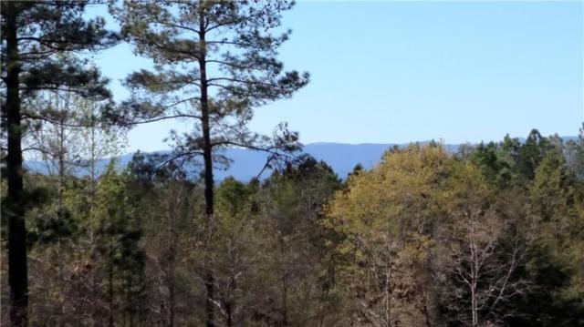 1-9 Cliffs Vista Parkway, Six Mile, SC 29682 (MLS #20203669) :: Tri-County Properties