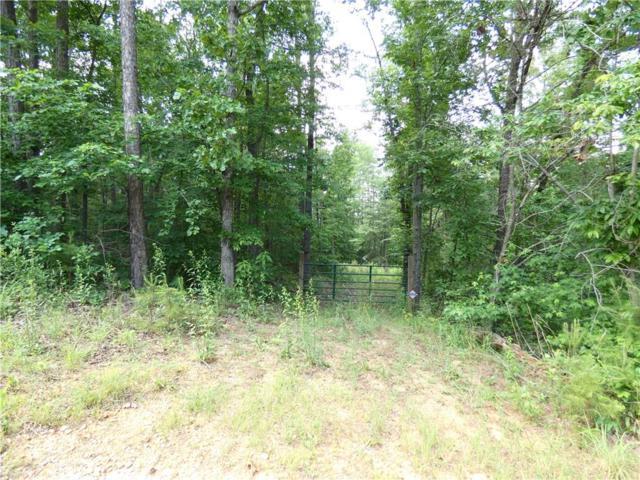 Lot 14 South River Trail, Martin, GA 30557 (MLS #20205123) :: Tri-County Properties