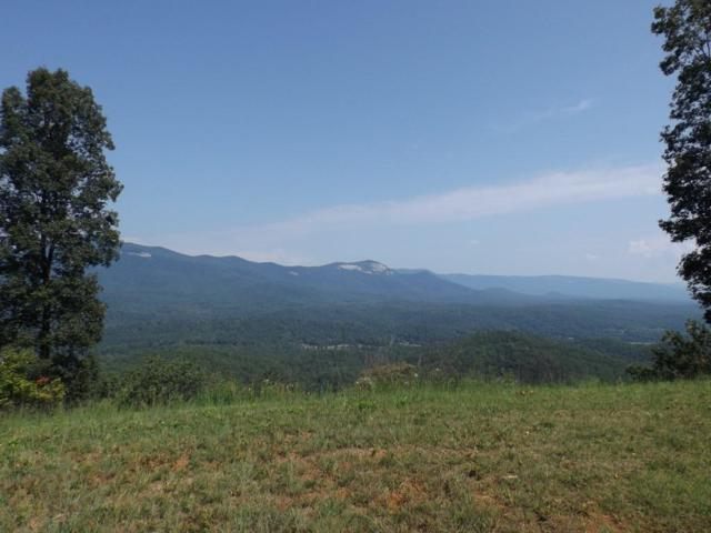 26.27 acs Scenic Mountain Drive, Pickens, SC 29671 (MLS #20205140) :: The Powell Group