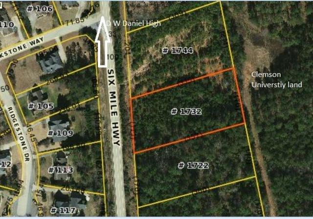 1732 Six Mile Highway, Central, SC 29630 (MLS #20205584) :: The Powell Group of Keller Williams